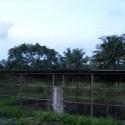 Agrarprojekt Kinderheim Elfenbeinküste